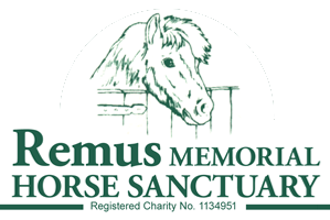 equiMedpak's supports REMUS HORSE SANCTUARY