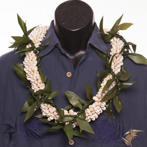 Ti Leafy Lei with Cowrie Shell - Leilanis Leis