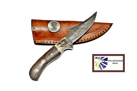 Damascus Steel Skinner Knife, Old Timer (Sharp finger size) /Stag & Walnut Grip by Titan Td-340