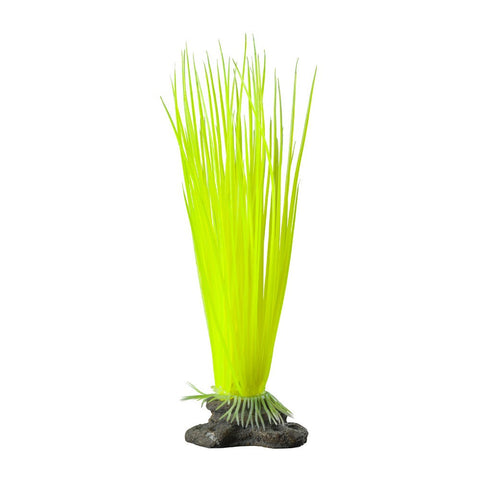 Elive Neon Yellow Hairgrass