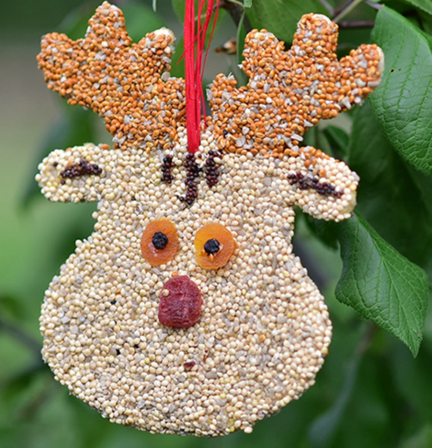 Christmas Cookie Bird Seed Ornament
