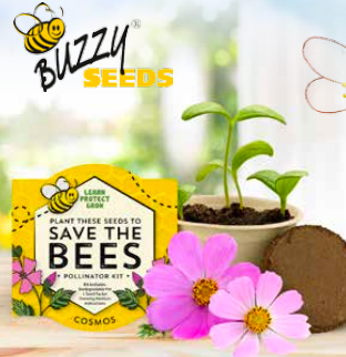 Buzzys Save The Bees Kits