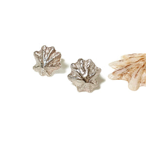 Sea inspired Limpet Shell Stud Earrings front