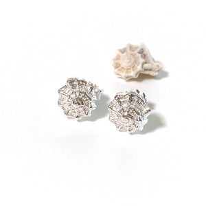 Shell silver stud Earrings