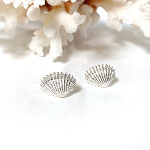 Sea Shell Stud earrings on coral