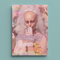 FEVER RAY - THE PLUNGE PSYCHICS ZINE