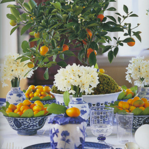 Citrus table setting with blue and white china