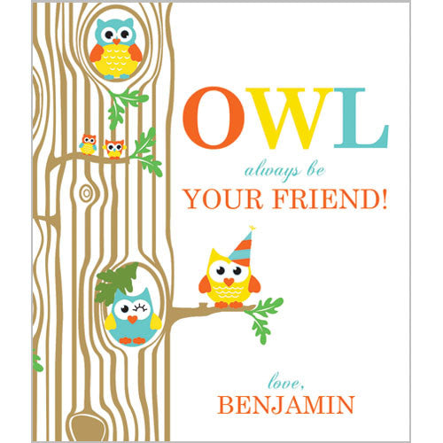 Colorful Boy Owl Valentines for Kids