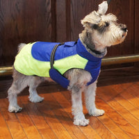 Designer Dog Coat - All Weather Alpine in Cobalt Blue & Iridescent Green