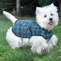 Designer Dog Coat - Alpine All-Weather Dog Coat - Flannel Navy Blue & Turquoise Plaid