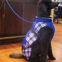 Designer Dog Coat - All Weather Alpine Plaid in Royal Blue