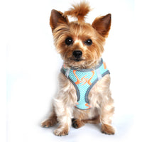 American River Neon Sport Dog Harnesses - Aruba Blue - FurMinded