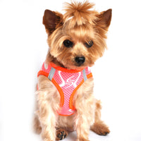 American River Neon Sport Dog Harnesses - Iridescent Pink - FurMinded