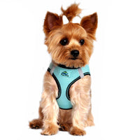 American River Dog Harness Top Stitch Collection - Aruba Blue - FurMinded