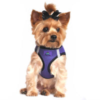 American River Dog Harness Top Stitch Collection - Ultra Violet - FurMinded