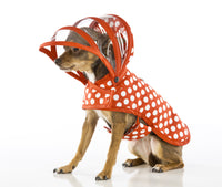 Dog Raincoat - Polka Dots White on Red - FurMinded