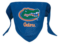 Florida Gators Dog Bandana - FurMinded