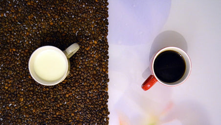 The Right Kind of Milk for Your Coffee