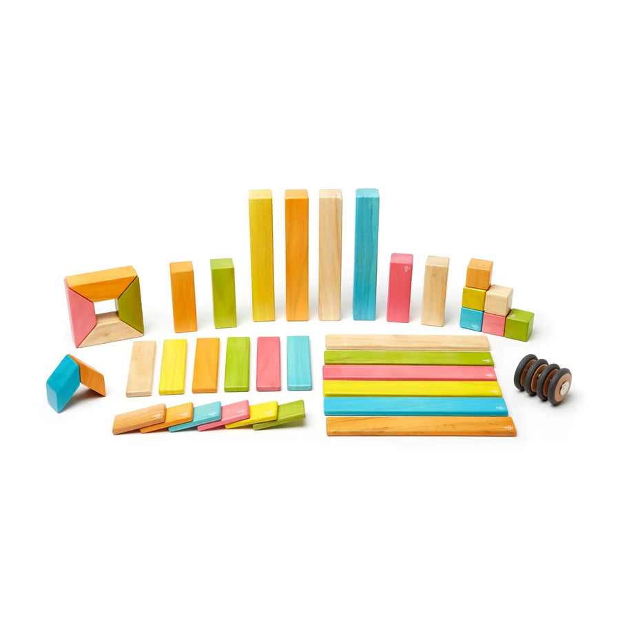 42 Piece Magnetic Wooden Block Set