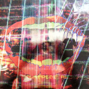 Animal Collective - Centipede HZ 2LP