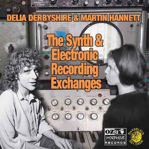 Delia Derbyshire and Martin Hannett - The Synth & Electronic Recording Exchanges 2LP