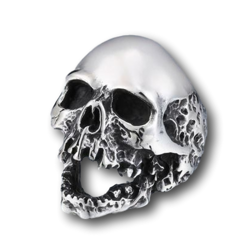 Rotting Skull Stainless Steel Ring