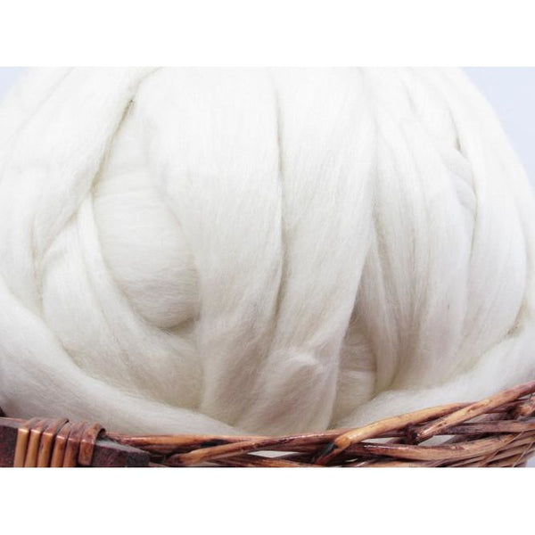 Polwarth Wool Undyed Natural Spinning Fiber