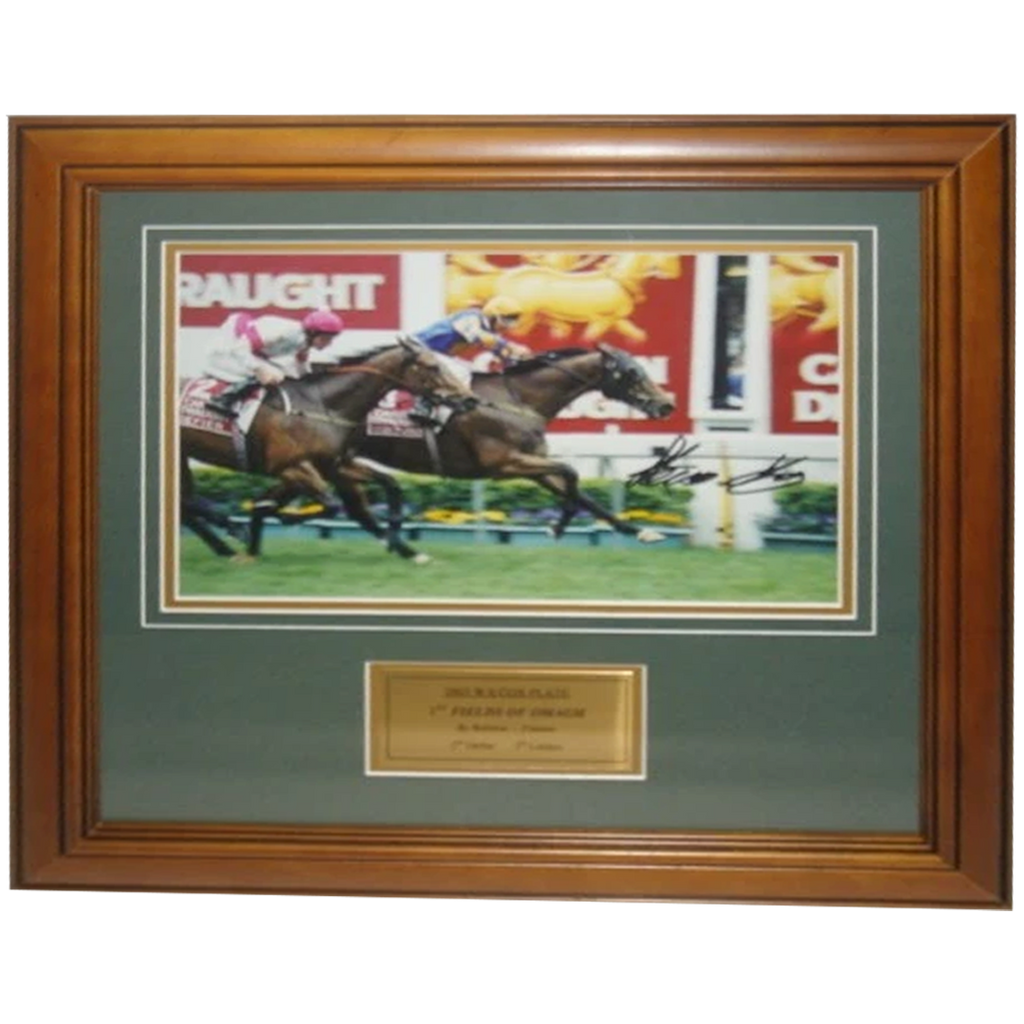2003 W.s. Cox Plate Winner Fields Of Omagh Signed Photo Framed - 2815