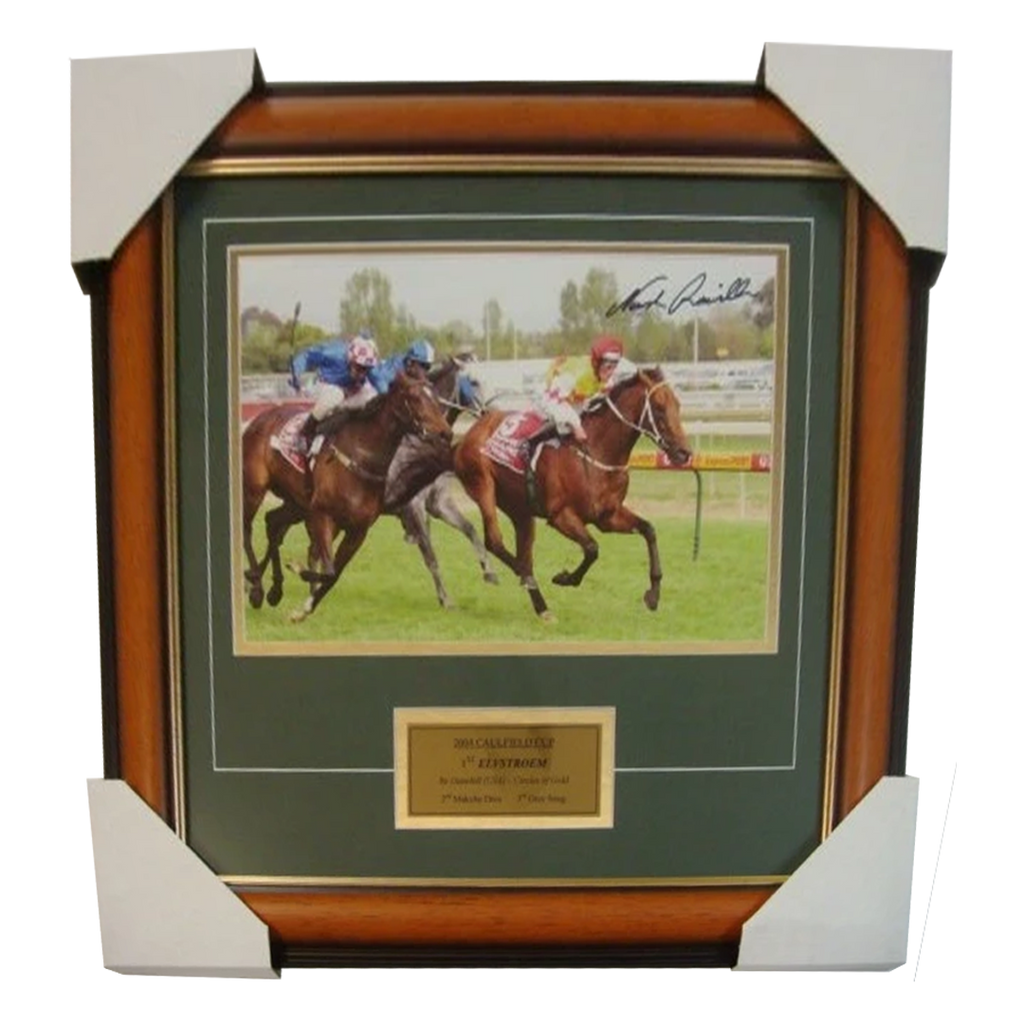 2004 Caulfield Cup Winner Elvstroem Signed Photo Framed - 2816