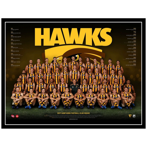 2017 Afl Official Hawthorn Hawks Team Print Framed Rioli Roughead O'meara Hodge - 3076