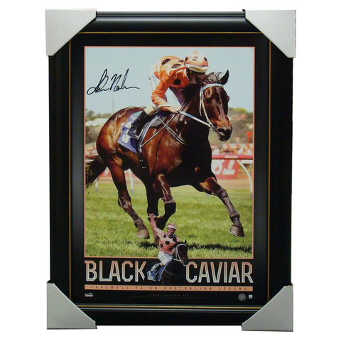 Black Caviar Australia Greatest Sprinter Signed Photo Framed - 1348