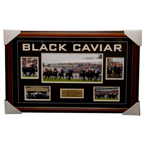 Black Caviar Royal Ascot 22 Wins in a Row Collage Framed - 4024