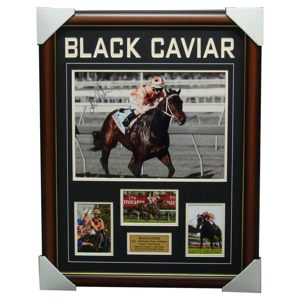 Black Caviar Signed Luke Nolen Photo Collage Framed - 1127
