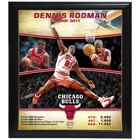 Dennis Rodman Chicago Bulls Player Collage Official NBA Print Framed - 4352