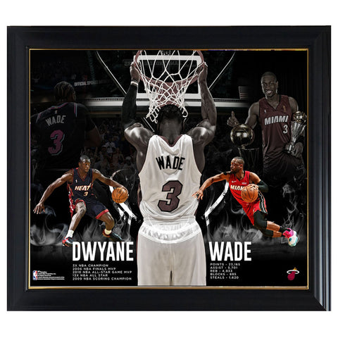 "Dwyane Wade Miami Heat Fanatics Authentic Framed 15"" x 17"" Retirement Collage Frame - 4583"