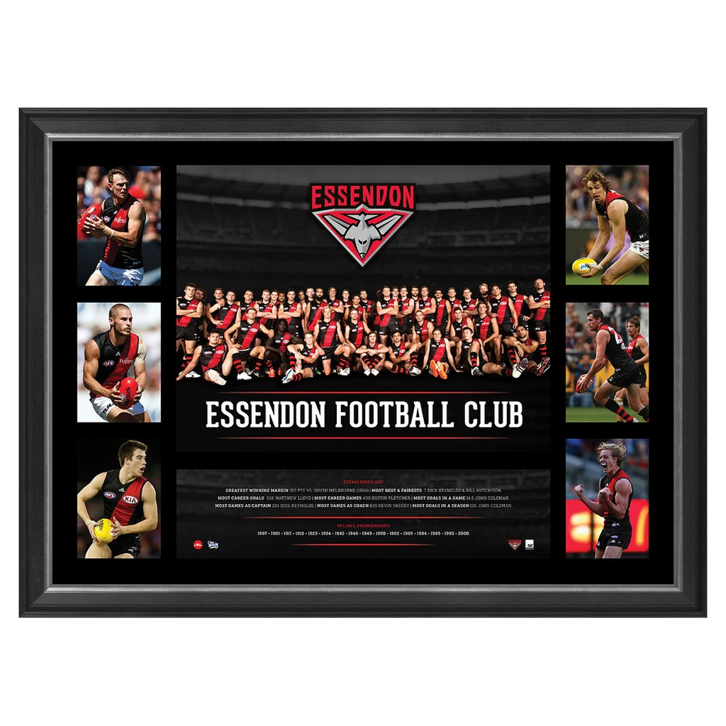 Essendon Bombers 2016 Official AFL Team Premiergraph Super Frame BRAND NEW - 2866