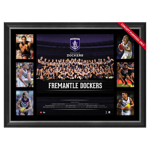 Fremantle Dockers 2016 Official AFL Team Premiergraph Super Frame Nat Fyfe - 2865