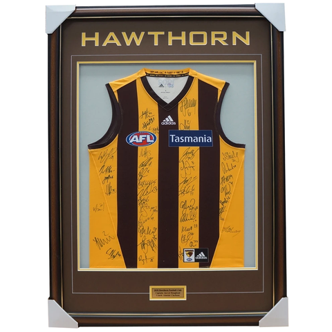 Hawthorn 2018 Signed Official Afl Team Jumper Framed Mitchell O'meara + Coa - 3410
