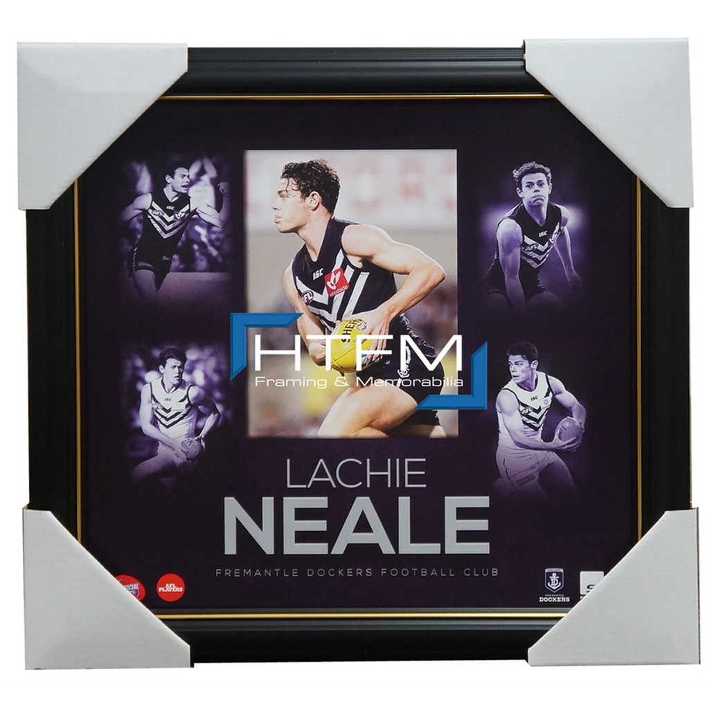 Lachie Neale Fremantle Dockers Official Afl Montage 2015 Print Framed Brand New - 2542