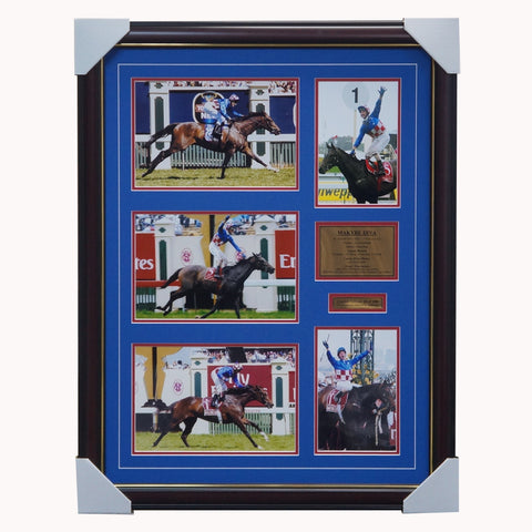 Makybe Diva Tribute Collage 3 X Melbourne Cup Framed - 2751