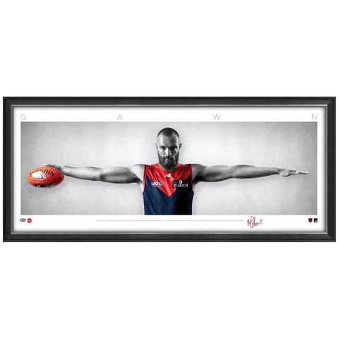 Max Gawn Signed Melbourne Demons Mini Wings Official AFL Print Framed NEW - 3743