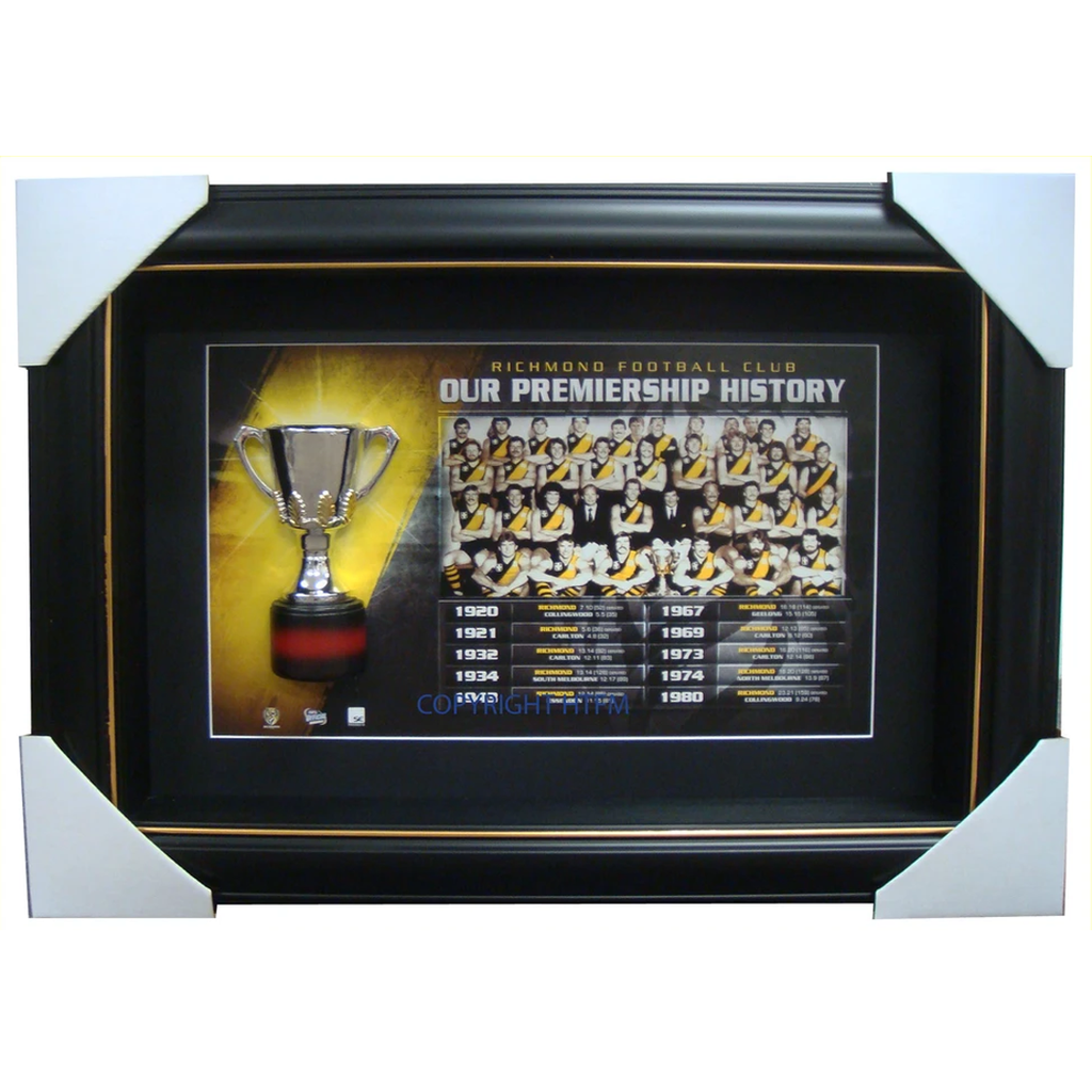 Richmond Tigers Limited Edition Premiership Box Framed with Replica Half Cup - 1500