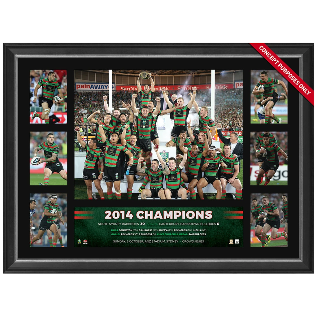 South Sydney Rabbitohs 2014 Nrl Premiers Deluxe Tribute Frame Inglis Burgess - 3071