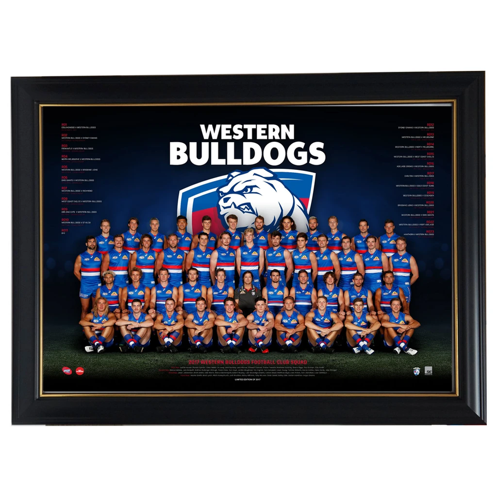 Western Bulldogs 2017 AFL OFFICIAL Team Print Framed Bontempelli Stringer Boyd - 3038