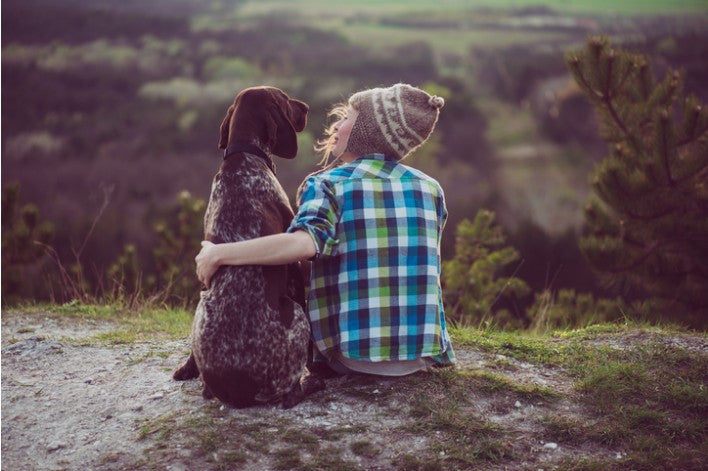 Important Safety Tips to Have Great Adventures With Your Dog