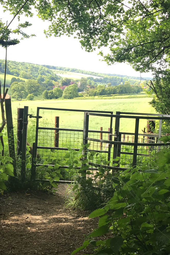 A picnic in Hambleden location for Miss Marple Chitty Chitty Bang Bang and 101 Dalmations