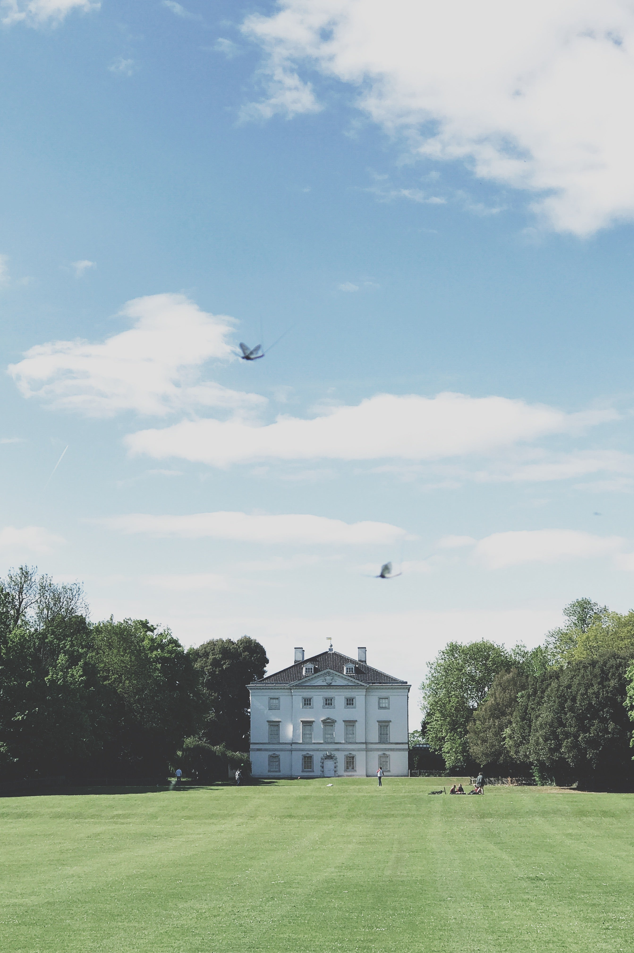 Bleak House Guide for June is a lovely riverside walk from Richmond. The walk features Marble Hill House, Petersham Nurseries, the White Swan and Ham House