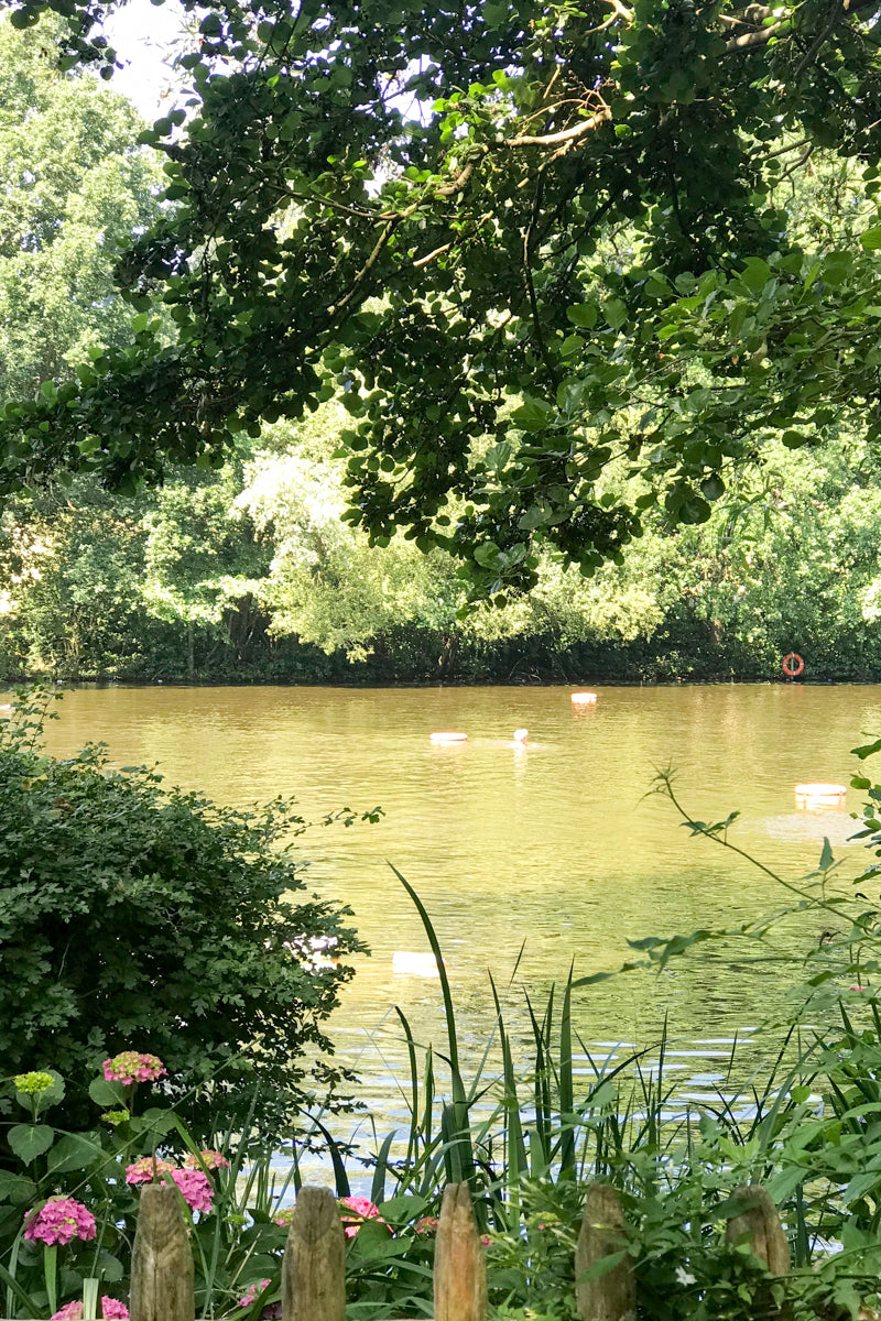 Swimming all year round in the Kenwood Ladies' Pond on Hampstead Heath