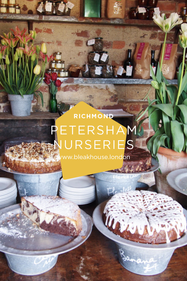 Petersham Nurseries is one of London's best dog-friendly restaurants. It's a beautiful walk along the river from Richmond and the food and surroundings are fabulous.