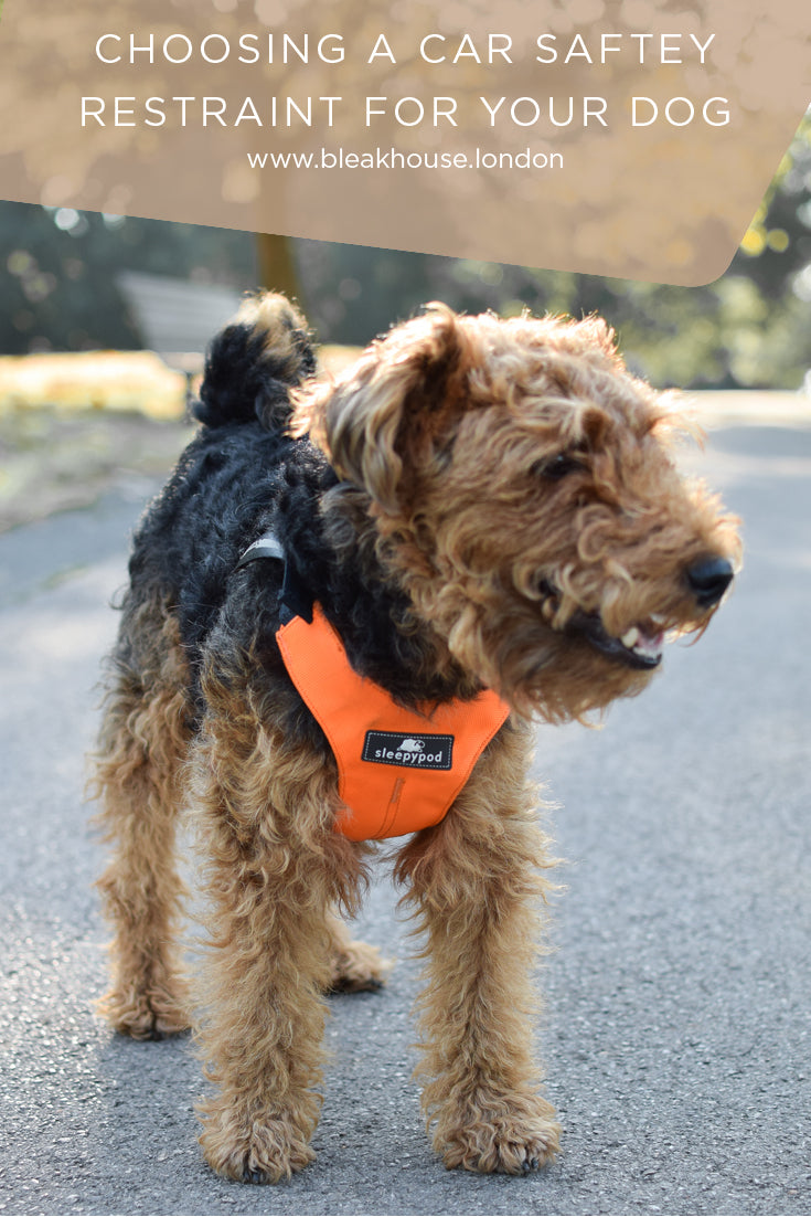 The Sleepypod ClickIt dog car harness is one of the few dog seatbelts on the market that has been properly crash-tested.